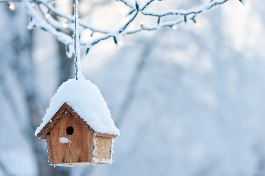 How To Prepare Your House for the Cold Weather