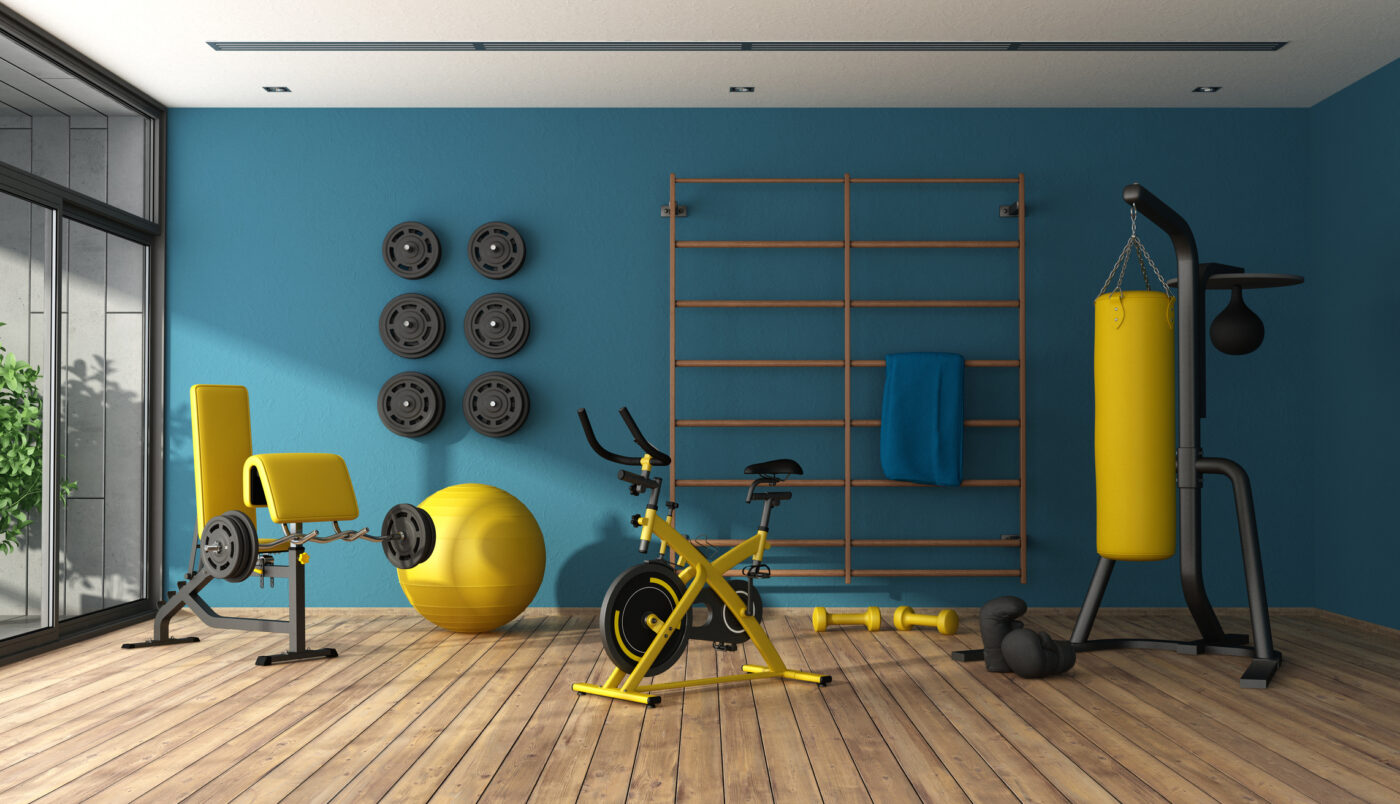 Home gym with punching boxer, bicycle and other fitness equipment